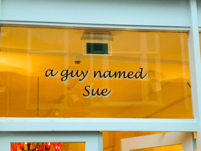 Guy Named Sue