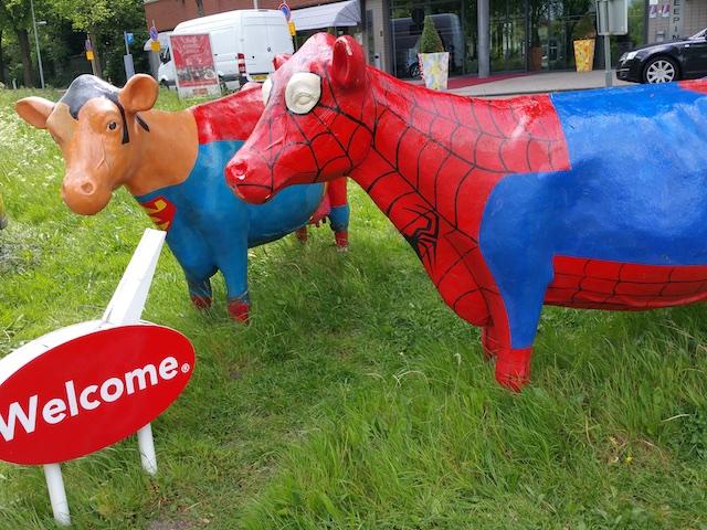 Spider Cow
