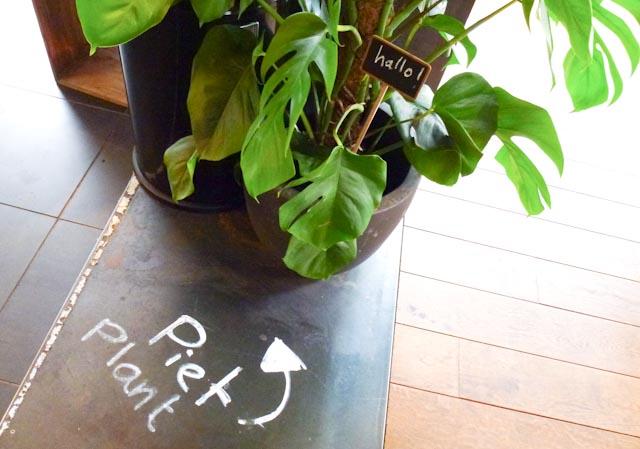 1728: Hallo, Piet Plant