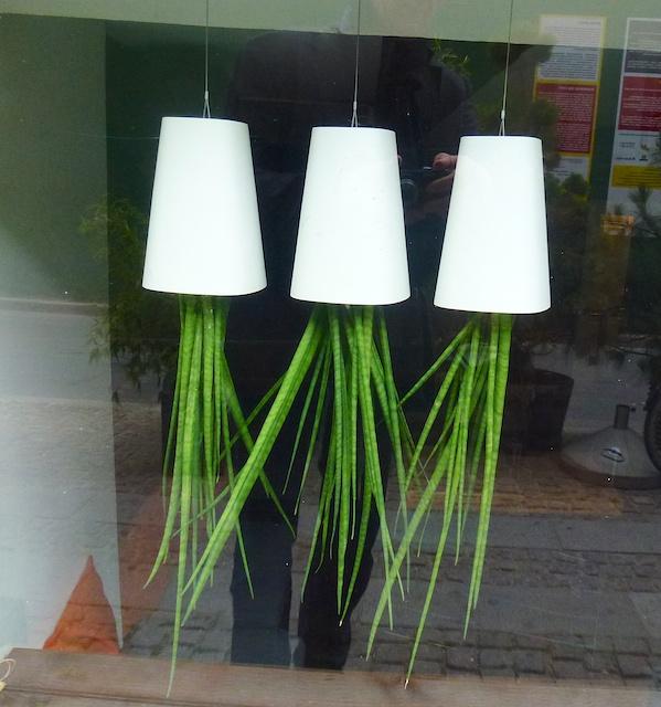 Plantlampjes