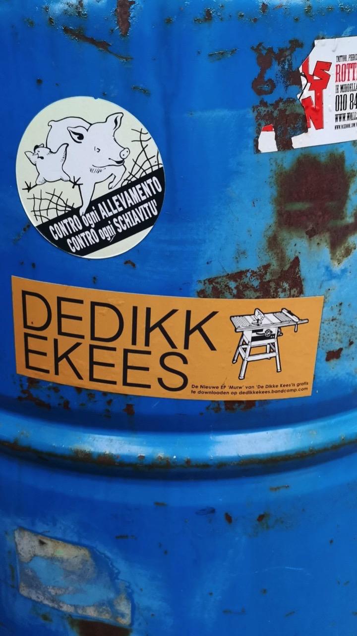 3964: DE DIKKE KEES